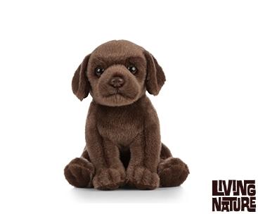 Living Nature – Chocolate Labrador Puppy